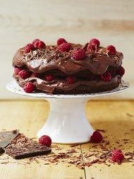 Epic vegan chocolate cake
