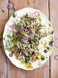 Beef stroganoff, fluffy rice, red onion & parsley pickle