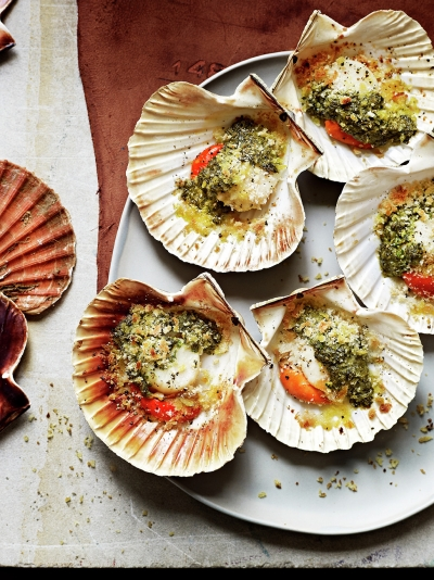 Grilled scallops with anchovy, mint & coriander